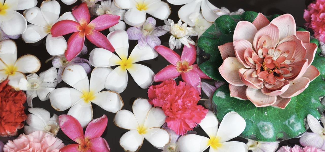 les hydrolats et eaux florales